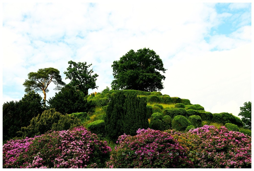 A liitle green hill